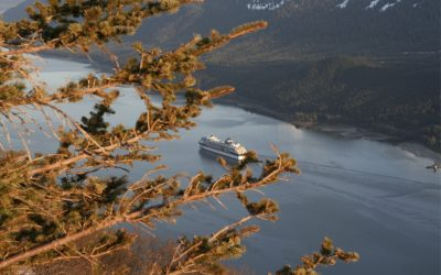 Fall Foliage: Discover Autumn Splendor Near Juneau