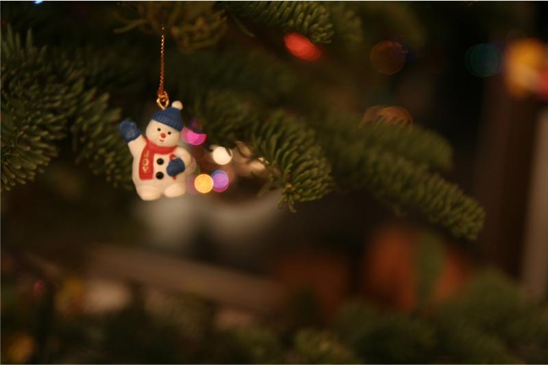 festive juneau