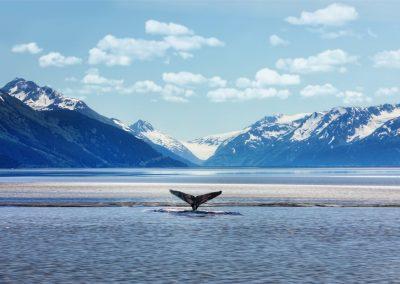 First Trip Alaska