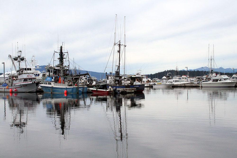 auke bay harbor